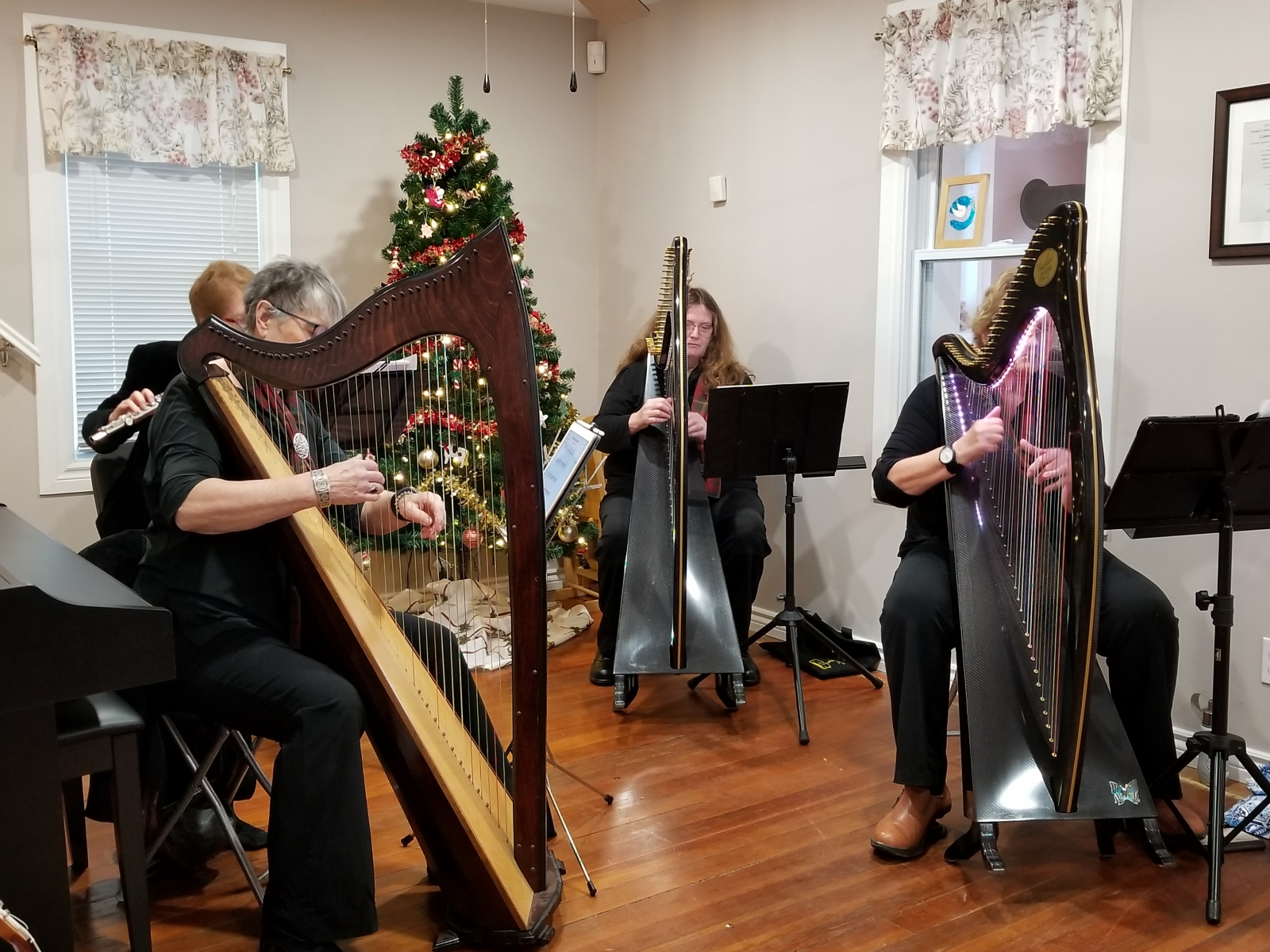 Harps visit the Day Hospice