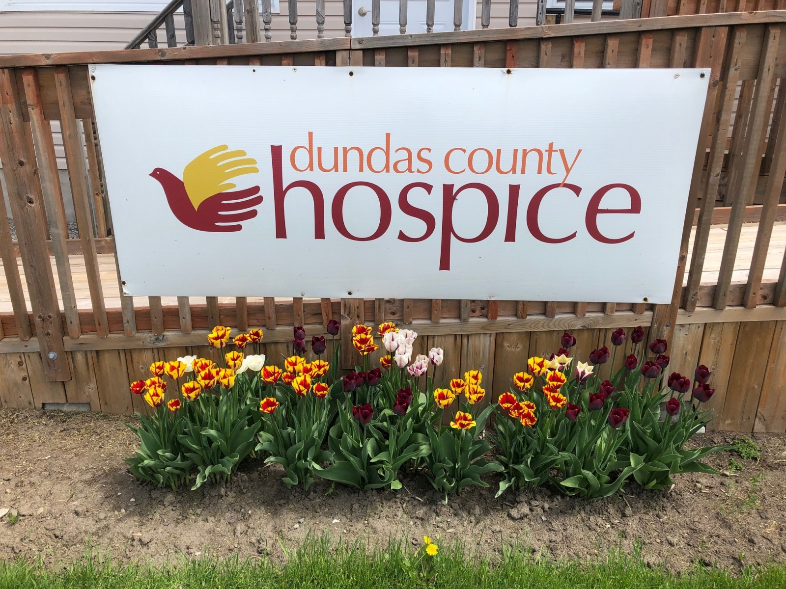 Spring at the Hospice